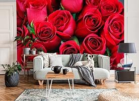 3D Фотообои «Нежные бордовые розы» вид 8