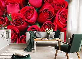 3D Фотообои «Нежные бордовые розы» вид 7