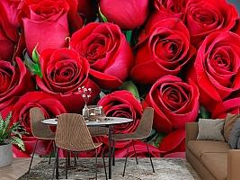3D Фотообои «Нежные бордовые розы» вид 2