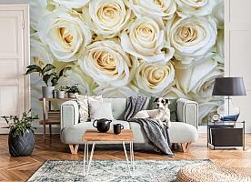 3D Фотообои «Нежные кремовые розы» вид 8