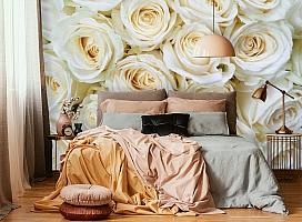 3D Фотообои «Нежные кремовые розы» вид 6