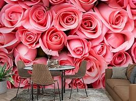 3D Фотообои «Обилие роз» вид 2