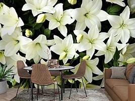 3D Фотообои «Белые лилии с бутонами» вид 2
