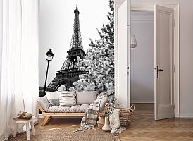 3D Фотообои «Цветущие деревья в Париже» вид 8