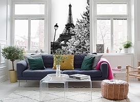 3D Фотообои «Цветущие деревья в Париже» вид 5