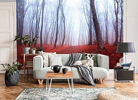 3D Фотообои  «Осенний лес в тумане»  вид 7