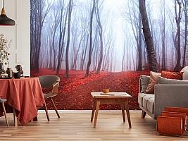 3D Фотообои  «Осенний лес в тумане»  вид 5