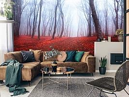 3D Фотообои  «Осенний лес в тумане»  вид 3