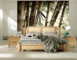 3D Фотообои «Бамбук»