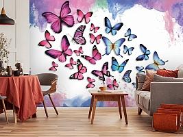 3D Фотообои «Красочные бабочки» вид 3