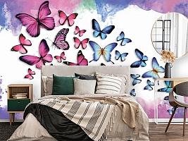3D Фотообои «Красочные бабочки» вид 2