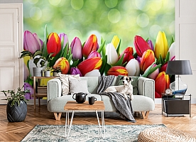 3D Фотообои «Разноцветные тюльпаны» вид 8
