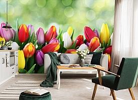 3D Фотообои «Разноцветные тюльпаны» вид 7