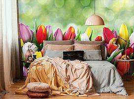 3D Фотообои «Разноцветные тюльпаны» вид 6