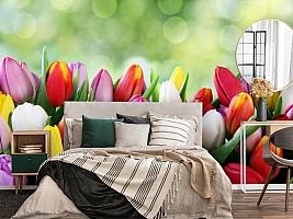 3D Фотообои «Разноцветные тюльпаны» вид 4