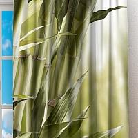 Фотошторы «Бамбук» вид 2
