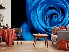 3D Фотообои  «Синяя роза» вид 5