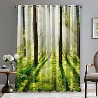 Фотошторы «Солнечный лес» вид 5