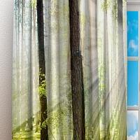 Фотошторы «Солнечный лес» вид 3