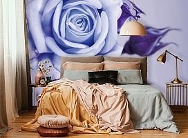 3D Фотообои  «Сиреневая роза»  вид 6