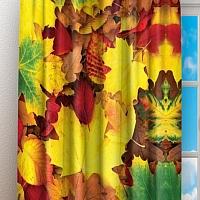 Фотошторы «Разноцветная листва» вид 3