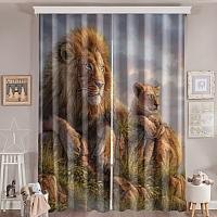 Фотошторы «Величественные львы» вид 6