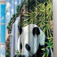 Фотошторы «Семейство панд» вид 2