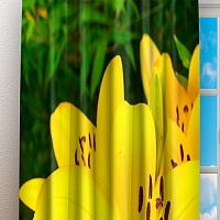 Фотошторы «Яркие желтые лилии » вид 3