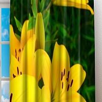 Фотошторы «Яркие желтые лилии » вид 2