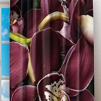 Фотошторы «Орхидеи и капли воды» вид 2