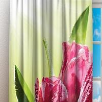Фотошторы «Тюльпаны на зеленом фоне» вид 3