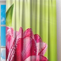 Фотошторы «Тюльпаны на зеленом фоне» вид 2