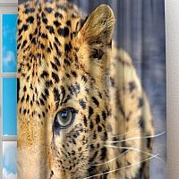 Фотошторы «Красивый леопард» вид 2