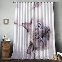 Фотошторы «Голубоглазая кошка» вид 8