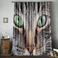 Фотошторы «Кошачий взгляд» вид 8