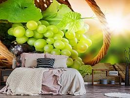 3D Фотообои  «Грозди винограда»  вид 6