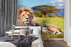 3D Фотообои  «Лев»  вид 7