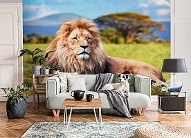 3D Фотообои  «Лев»  вид 6