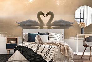 3D Фотообои «Влюбленные лебеди» вид 5