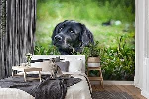 3D Фотообои «Собачка в траве» вид 7