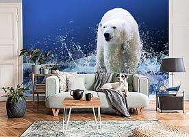 3D Фотообои «Белый медведь на льдине» вид 6