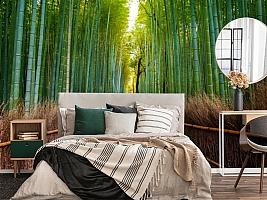 3D Фотообои «Бамбуковый лес» вид 4