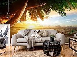 3D Фотообои  «Закат под пальмами»  вид 5