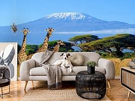 3D Фотообои «Жирафы в саванне» вид 4