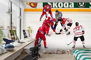 3D Фотообои  «Хоккей»  вид 3