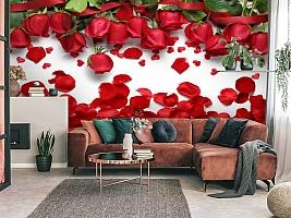 3D Фотообои «Алые розы с лепестками»
