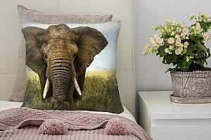 3D Подушка «Слон» вид 7