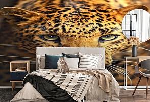 3D Фотообои  «Леопард портрет»  вид 5