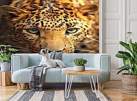 3D Фотообои  «Леопард портрет»  вид 2