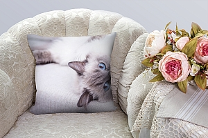 3D Подушка «Голубоглазая кошка» вид 3